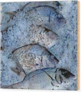 Porgies On Ice Wood Print