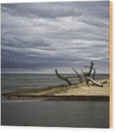 Port Franks # 5 Wood Print