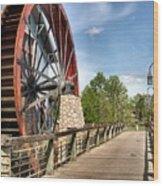 Port Orleans Riverside IIi Wood Print