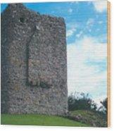 Portaferry Castle Wood Print