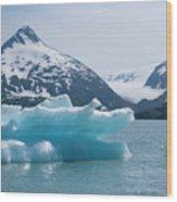 Porter Glacier Alaska II Wood Print