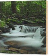 Porter's Cascade In Spring Wood Print