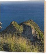 Portofino Green And Blu Liguria Rocks And Sea Wood Print