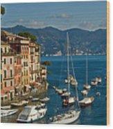 Portofino Italy Wood Print by Allan Einhorn