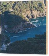 Portofino San Fruttuoso Bay Wood Print
