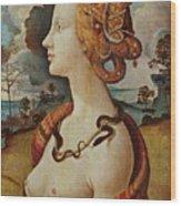 Portrait De Femme Dit De Simonetta Vespucci Wood Print