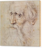 Portrait Of A Bearded Old Man Wood Print