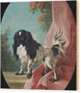 Portrait Of A Cavalier King Charles Spaniel Wood Print