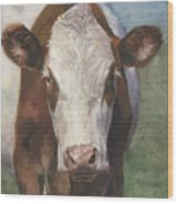 Portrait Of A Cow Iv Wood Print