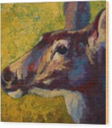 Portrait Of A Doe Wood Print