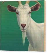 Portrait Of A Goat Wood Print by James W Johnson