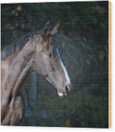 Portrait Of A Horse Wood Print