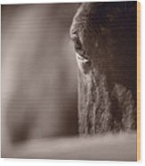 Portrait Of A Horse Kentucky Wood Print
