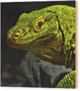Portrait Of A Komodo Dragon Wood Print