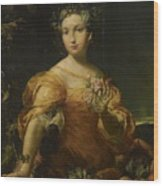 Portrait Of A Lady, Allegory Of Abundantia Wood Print