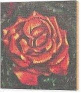 Portrait Of A Rose 2 Wood Print