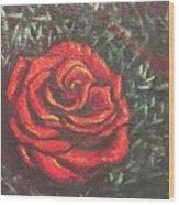 Portrait Of A Rose 4 Wood Print