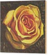 Portrait Of A Rose 5 Wood Print