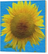 Portrait Of A Sunflower Wood Print