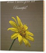 Portrait Of A Wildflower 1 Wood Print