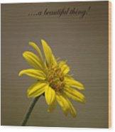 Portrait Of A Wildflower 3 Wood Print