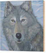 Portrait Of A Wolf Wood Print