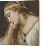 Portrait Of A Woman As An Allegorical Figure Wood Print