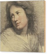 Portrait Of A Young Woman Looking Over Her Shoulder Wood Print