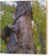 Portrait Of America - Look Up Wood Print