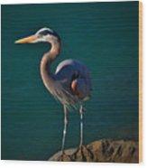 Portrait Of An Heron Wood Print