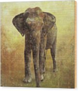 Portrait Of An Elephant Digital Painting With Detailed Texture Wood Print
