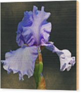 Portrait Of An Iris Wood Print