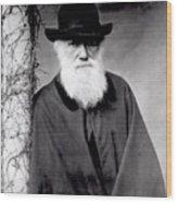 Portrait Of Charles Darwin Wood Print by Julia Margaret Cameron