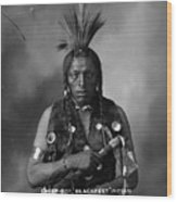 Portrait Of Cree Indian Wood Print