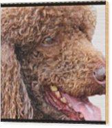 Portrait Of Guinness Wood Print