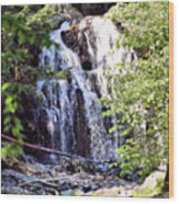 Portrait Of Houston Brook Falls Wood Print