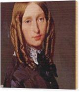 Portrait Of Madame Frederic Reiset 1847 Wood Print