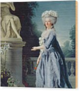 Portrait Of Marie-louise Victoire De France Wood Print by Adelaide Labille-Guiard