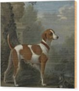 Portrait Of The Duke Of Hamilton Hound Wood Print
