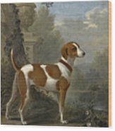 Portrait Of The Duke Of Hamilton's Hound Jewell Wood Print