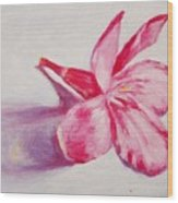 Portrait Of The Kaneri Flower. Oleander Wood Print