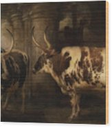 Portrait Of Two Oxen - The Property Of The Earl Of Powis Wood Print