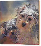 Portrait Of Yorkshire Terrier Puppy Dogs Wood Print
