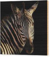 Portrait Of Zebra Wood Print