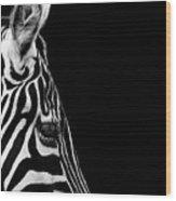 Portrait Of Zebra In Black And White Iv Wood Print