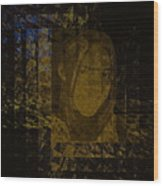 Portrait Reflection From Fresnel Prisms Wood Print