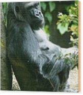 Posing Gorilla Wood Print