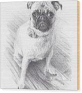 Posing Pug Wood Print