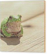 Posing Tree Frog Wood Print