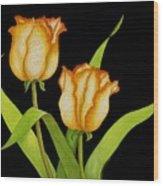 Posing Tulips Wood Print